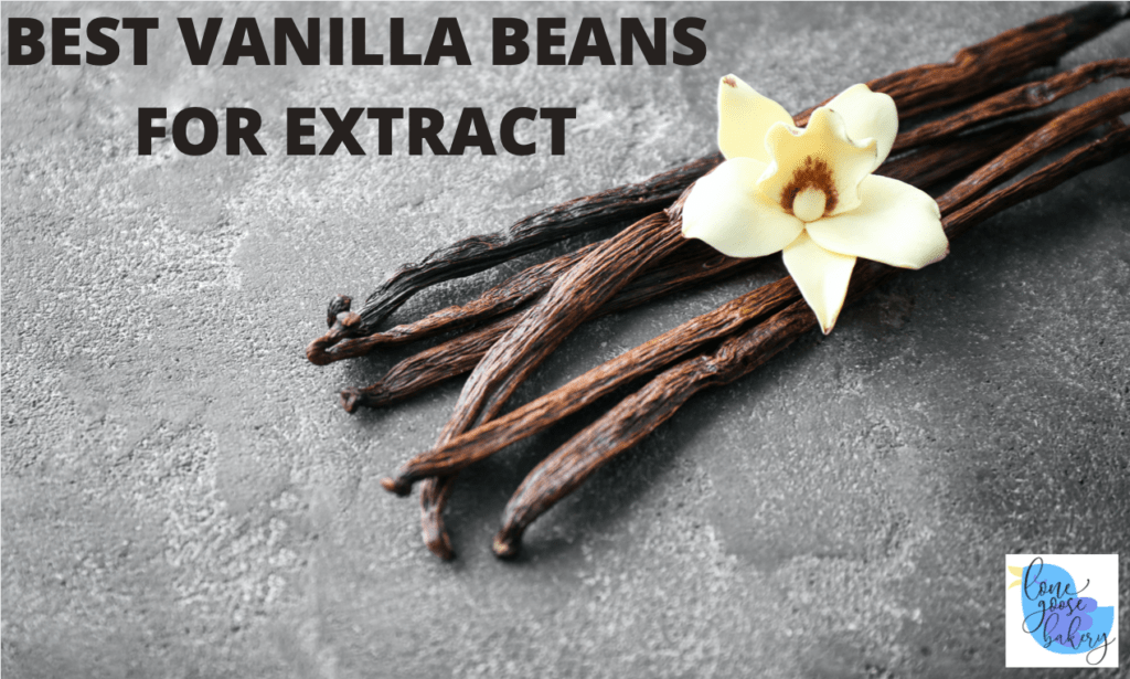 best vanilla beans for extract